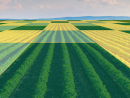 FCC Appoints Trilogy CEO George Woodward to the $1B Precision Agriculture Task Force